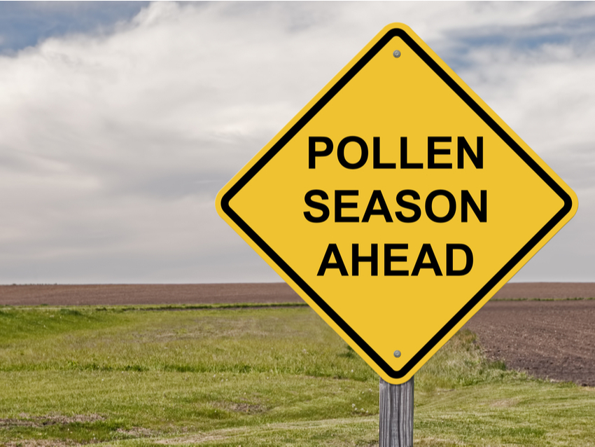 Dealing with the effects of hay fever – what's the antidote for your eyes?